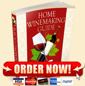 Home Wine Making Guide